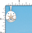 Sterling Silver Sand Dollar Charm with 14Kt. Starfish